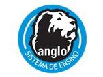Logo Angle